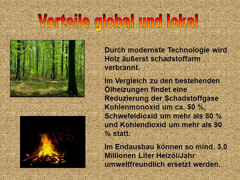 Durch modernste Technologie wird Holz äußerst schadstoffarm verbrannt. Im Vergleich zu den bestehenden Ölheizungen findet eine Reduzierung der Schadst