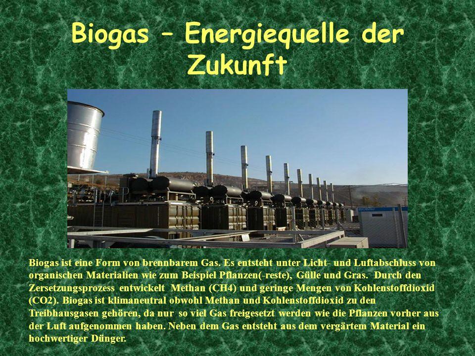 Biogas ist eine Form von brennbarem Gas. Es entsteht unter Licht- und Luftabschluss von organischen Materialien wie zum Beispiel Pflanzen(-reste), Gül