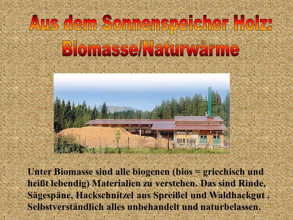 Unter Biomasse sind alle biogenen (bios = griechisch und heißt lebendig) Materialien zu verstehen. Das sind Rinde, Sägespäne, Hackschnitzel aus Spreiß