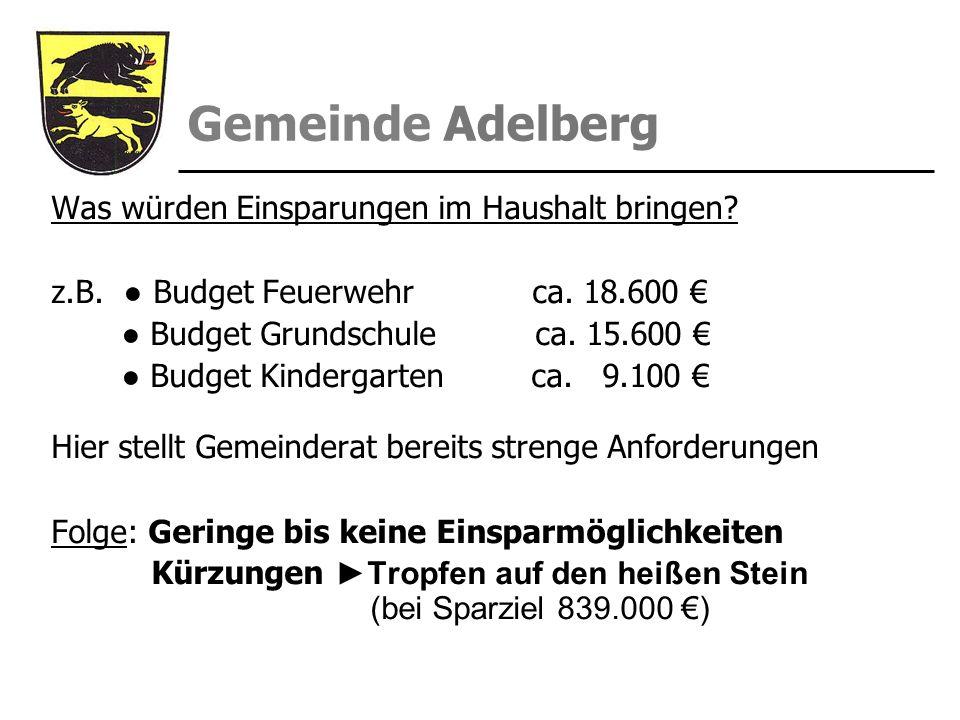 Gemeinde Adelberg Was würden Einsparungen im Haushalt bringen? z.B. Budget Feuerwehr ca. 18.600 Budget Grundschule ca. 15.600 Budget Kindergarten ca.