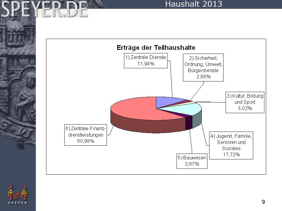 10 Haushalt 2013
