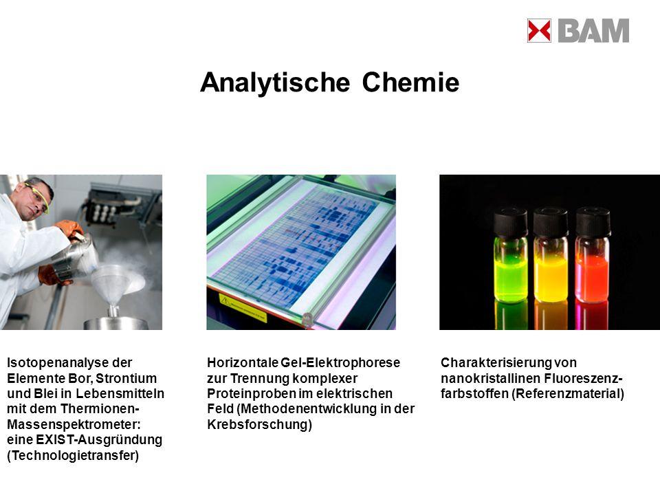 Analytische Chemie Isotopenanalyse der Elemente Bor, Strontium und Blei in Lebensmitteln mit dem Thermionen- Massenspektrometer: eine EXIST-Ausgründun