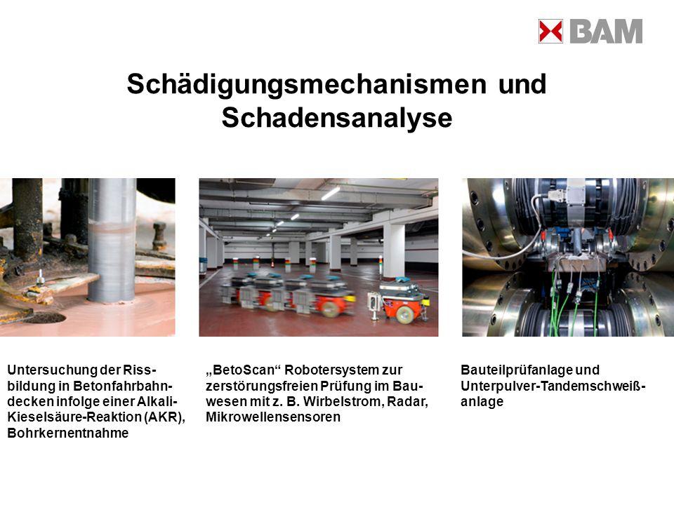 Schädigungsmechanismen und Schadensanalyse Untersuchung der Riss- bildung in Betonfahrbahn- decken infolge einer Alkali- Kieselsäure-Reaktion (AKR), B