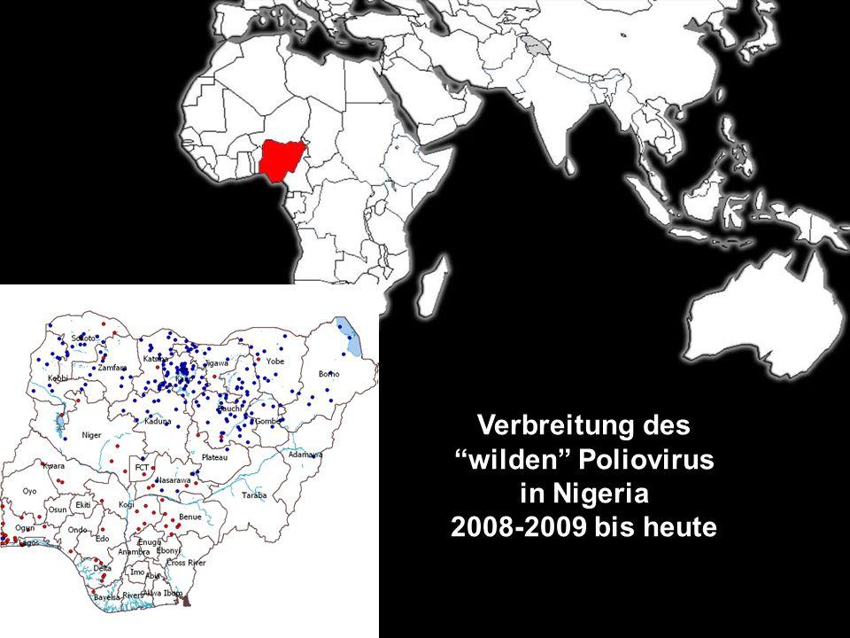 Verbreitung des wilden Poliovirus in Nigeria 2008-2009 bis heute