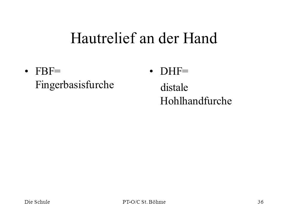 Hautrelief an der Hand FBF= Fingerbasisfurche DHF= distale Hohlhandfurche Die SchulePT-O/C St. Böhme36