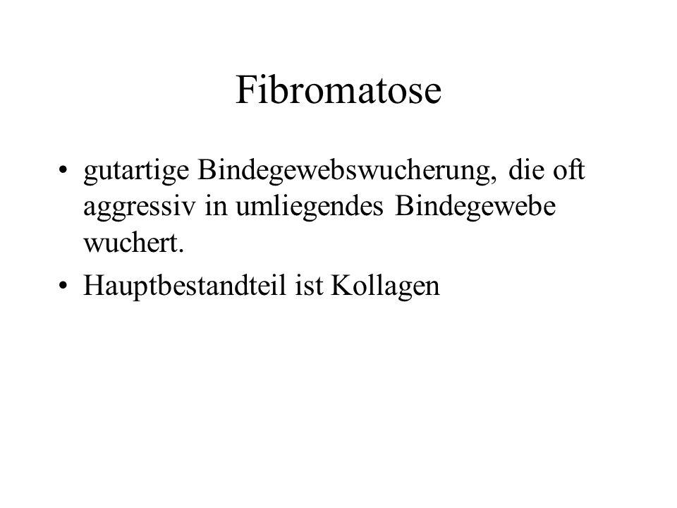 Fibromatose gutartige Bindegewebswucherung, die oft aggressiv in umliegendes Bindegewebe wuchert. Hauptbestandteil ist Kollagen