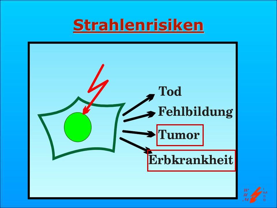 Stochastische und deterministische Effekte Schwellendosis mit Sicherheit vorhanden Vermutlich keine Schwellendosis 100 mSv