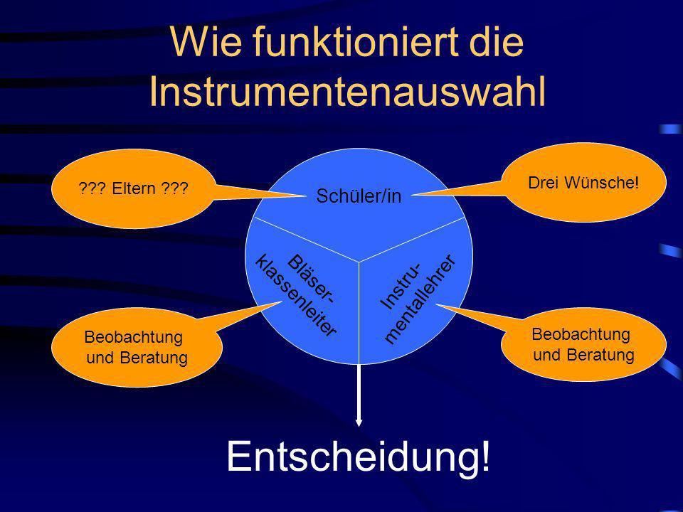 Wie groß ist die Bläserklasse? Querflöten Klarinetten Saxophone Waldhörner Trompeten Tenorhörner Tuba/Tuben Posaunen 2 2 3 2 3 3 3 2 insgesamt 20 Kind