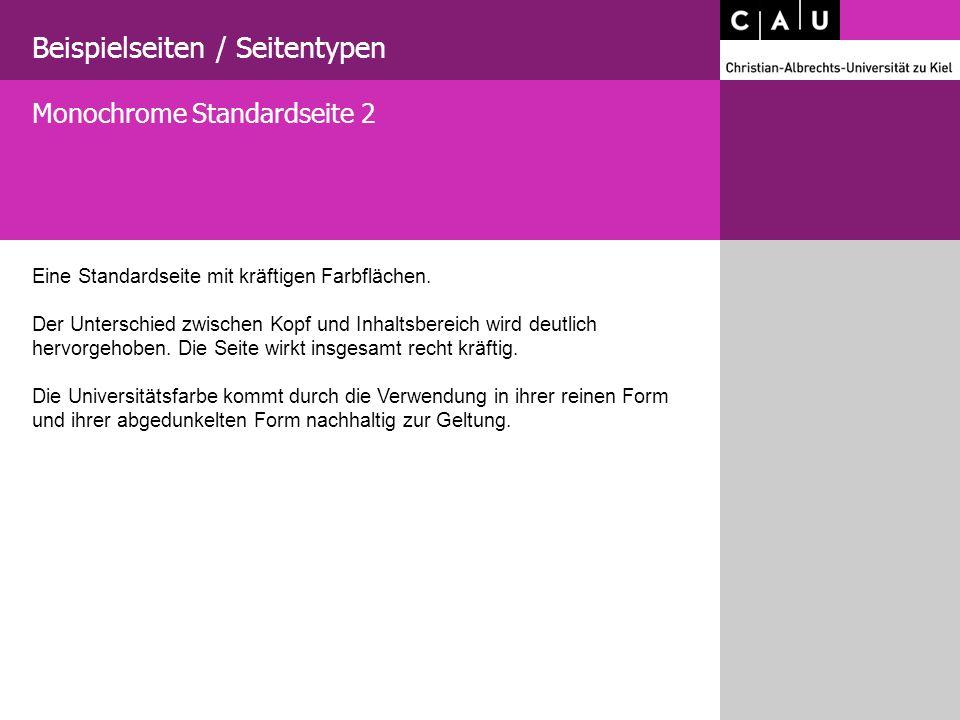 Beispielseiten / Seitentypen Eine Standardseite mit kräftigen Farbflächen.