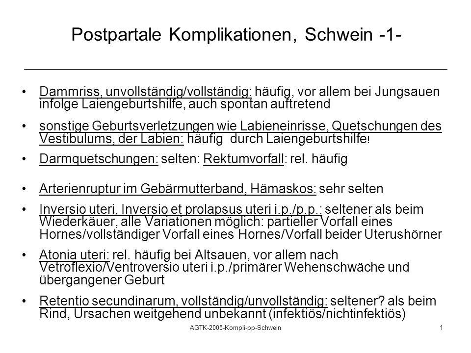 AGTK-2005-Kompli-pp-Schwein1 Postpartale Komplikationen, Schwein -1- Dammriss, unvollständig/vollständig: häufig, vor allem bei Jungsauen infolge Laie