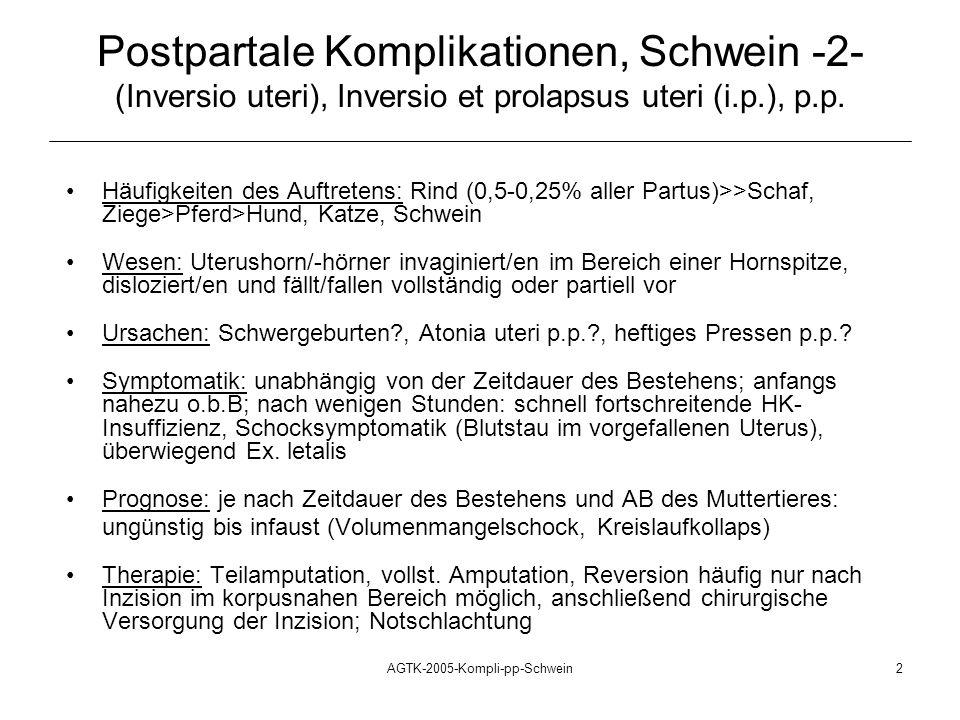 AGTK-2005-Kompli-pp-Schwein2 Häufigkeiten des Auftretens: Rind (0,5-0,25% aller Partus)>>Schaf, Ziege>Pferd>Hund, Katze, Schwein Wesen: Uterushorn/-hö