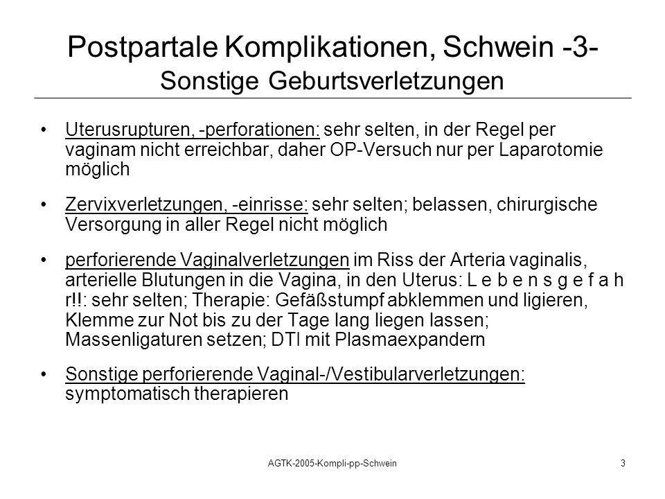 AGTK-2005-Kompli-pp-Schwein3 Uterusrupturen, -perforationen: sehr selten, in der Regel per vaginam nicht erreichbar, daher OP-Versuch nur per Laparoto