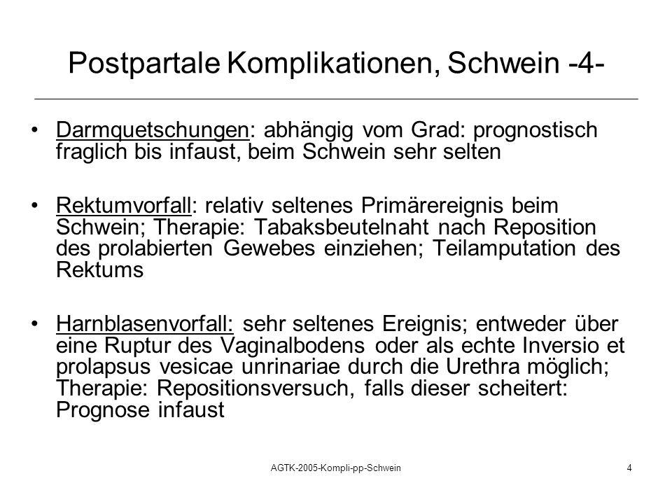 AGTK-2005-Kompli-pp-Schwein4 Darmquetschungen: abhängig vom Grad: prognostisch fraglich bis infaust, beim Schwein sehr selten Rektumvorfall: relativ s
