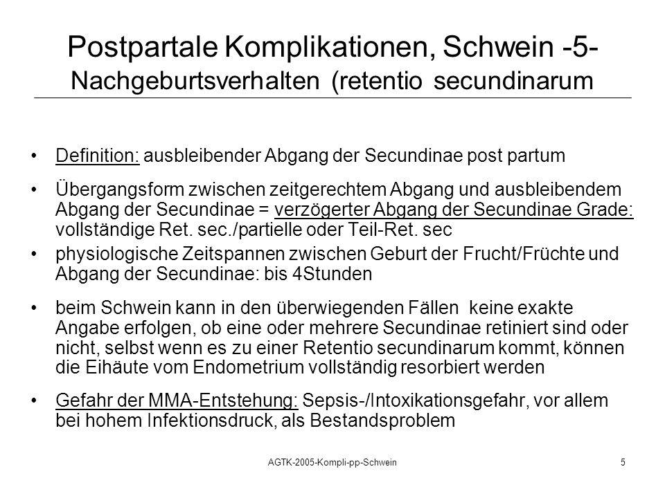 AGTK-2005-Kompli-pp-Schwein5 Definition: ausbleibender Abgang der Secundinae post partum Übergangsform zwischen zeitgerechtem Abgang und ausbleibendem