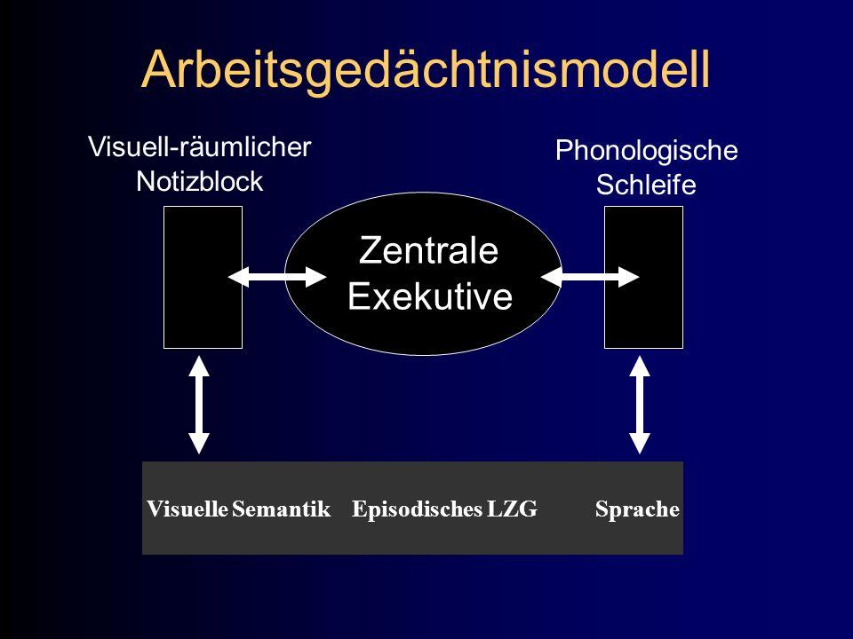 Arbeitsgedächtnismodell Zentrale Exekutive Visuell-räumlicher Notizblock Phonologische Schleife Visuelle Semantik Episodisches LZG Sprache