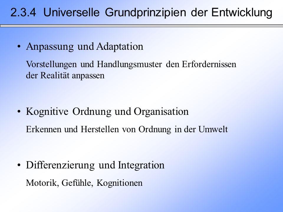 2.3.4 Universelle Grundprinzipien der Entwicklung Anpassung und Adaptation Vorstellungen und Handlungsmuster den Erfordernissen der Realität anpassen