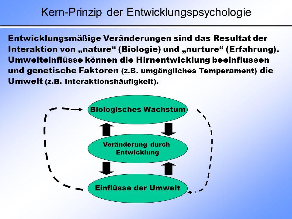 Kern-Prinzip der Entwicklungspsychologie Veränderung durch Entwicklung Einflüsse der Umwelt Biologisches Wachstum Entwicklungsmäßige Veränderungen sin