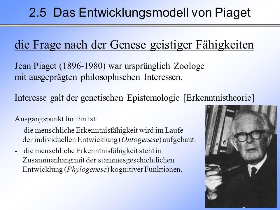 2.5 Das Entwicklungsmodell von Piaget die Frage nach der Genese geistiger Fähigkeiten Jean Piaget (1896-1980) war ursprünglich Zoologe mit ausgeprägte