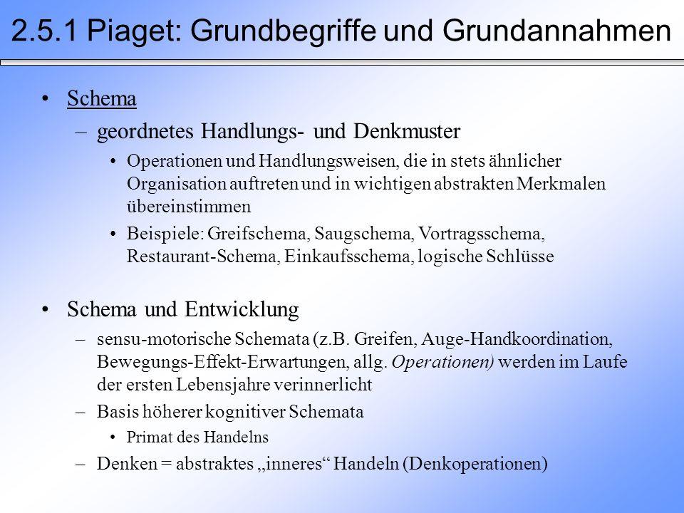 2.5.1 Piaget: Grundbegriffe und Grundannahmen Schema –geordnetes Handlungs- und Denkmuster Operationen und Handlungsweisen, die in stets ähnlicher Org
