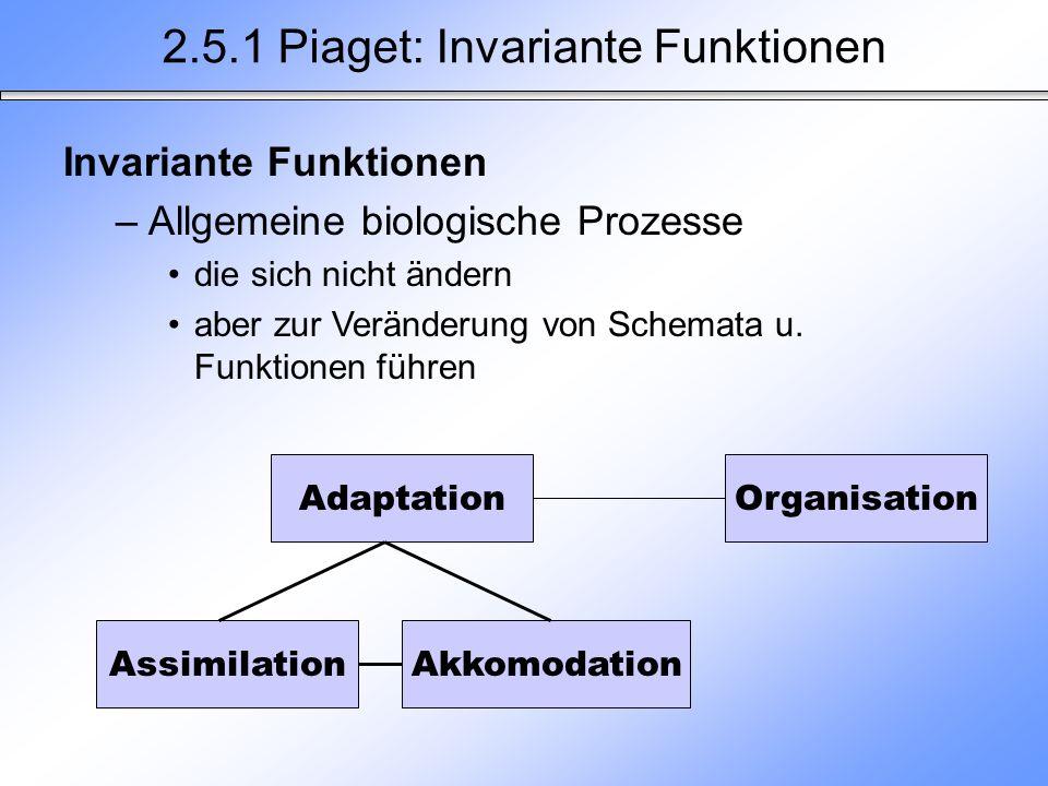 2.5.1 Piaget: Invariante Funktionen Adaptation AssimilationAkkomodation Organisation Invariante Funktionen –Allgemeine biologische Prozesse die sich n