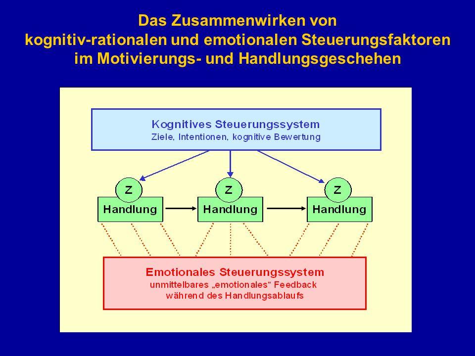 Das Zusammenwirken von kognitiv-rationalen und emotionalen Steuerungsfaktoren im Motivierungs- und Handlungsgeschehen