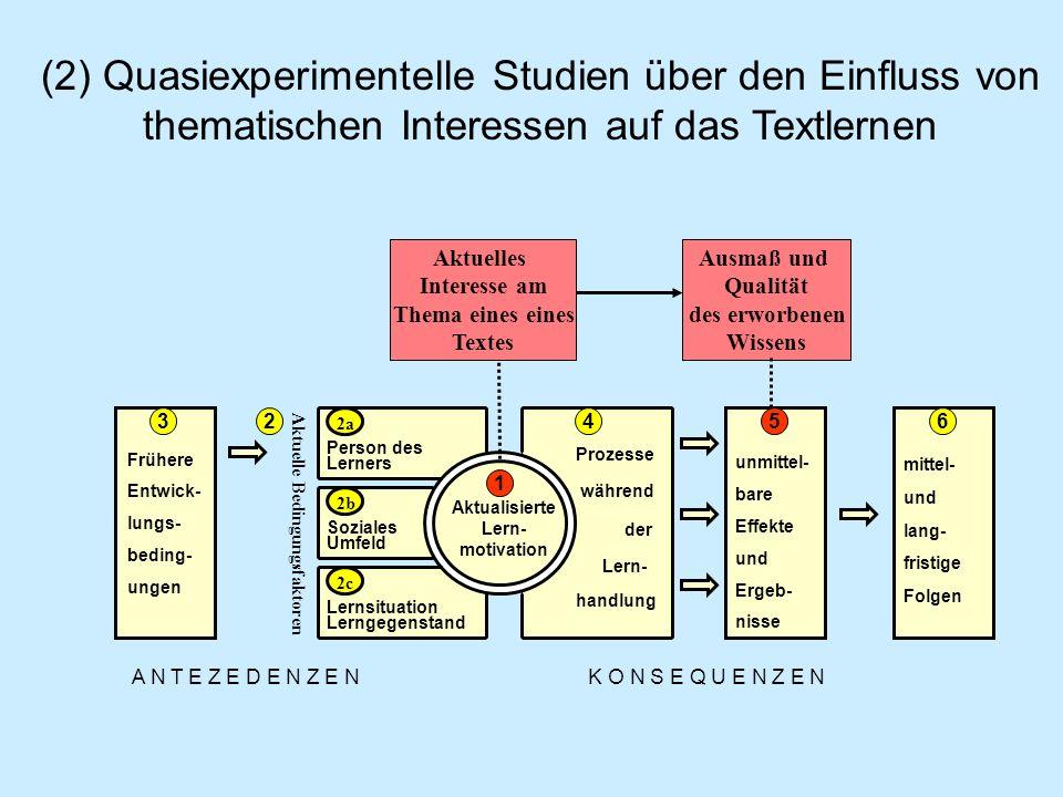 Prozesse während Frühere Entwick- lungs- beding- ungen Soziales Umfeld Lernsituation Lerngegenstand Person des Lerners Aktualisierte Lern- motivation