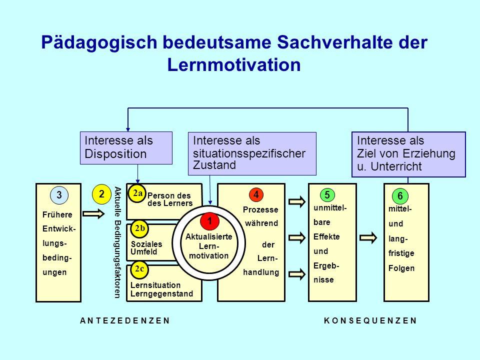 Prozesse während Soziales Umfeld Lernsituation Lerngegenstand Person des des Lerners Aktualisierte Lern- motivation 1 2c 2b 2 4 Aktuelle Bedingungsfak
