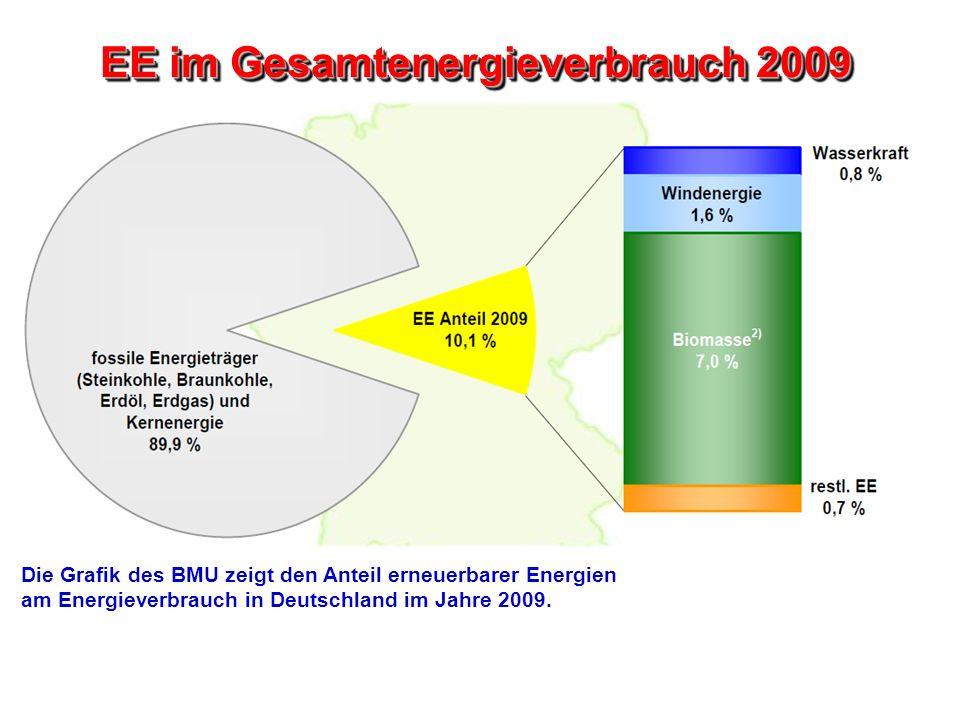 EE im Gesamtenergieverbrauch 2009 Die Grafik des BMU zeigt den Anteil erneuerbarer Energien am Energieverbrauch in Deutschland im Jahre 2009.