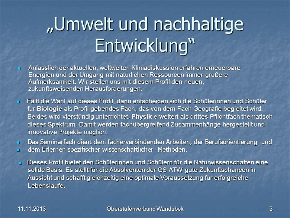 11.11.2013Oberstufenverbund Wandsbek3 Umwelt und nachhaltige Entwicklung Anlässlich der aktuellen, weltweiten Klimadiskussion erfahren erneuerbare Ene