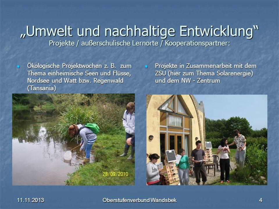 11.11.2013Oberstufenverbund Wandsbek4 Umwelt und nachhaltige Entwicklung Projekte / außerschulische Lernorte / Kooperationspartner: Ökologische Projek