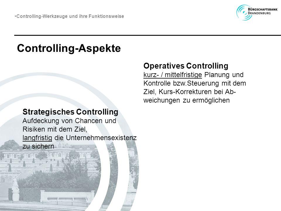 Controlling-Aspekte Strategisches Controlling Aufdeckung von Chancen und Risiken mit dem Ziel, langfristig die Unternehmensexistenz zu sichern Operati