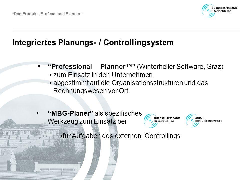 Integriertes Planungs- / Controllingsystem Professional Planner (Winterheller Software, Graz) zum Einsatz in den Unternehmen abgestimmt auf die Organi