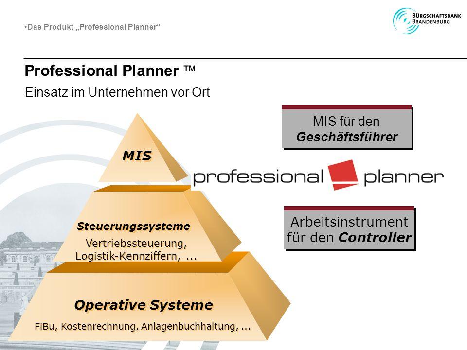 Professional Planner Einsatz im Unternehmen vor Ort MIS Steuerungssysteme Operative Systeme Vertriebssteuerung, Logistik-Kennziffern,... Vertriebssteu