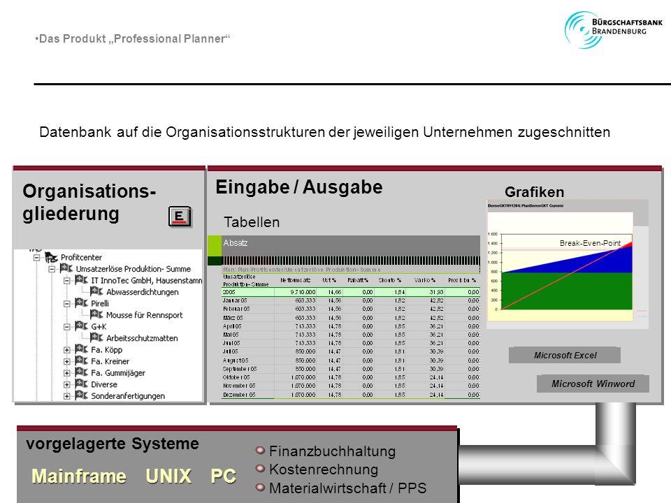 Datenbank auf die Organisationsstrukturen der jeweiligen Unternehmen zugeschnitten Eingabe / Ausgabe Tabellen Grafiken Microsoft Excel Microsoft Winwo