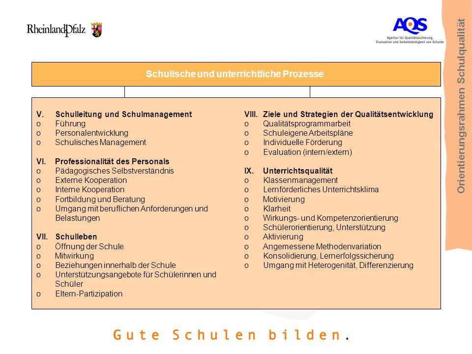 Schulische und unterrichtliche Prozesse V.Schulleitung und Schulmanagement oFührung oPersonalentwicklung oSchulisches Management VI.Professionalität d