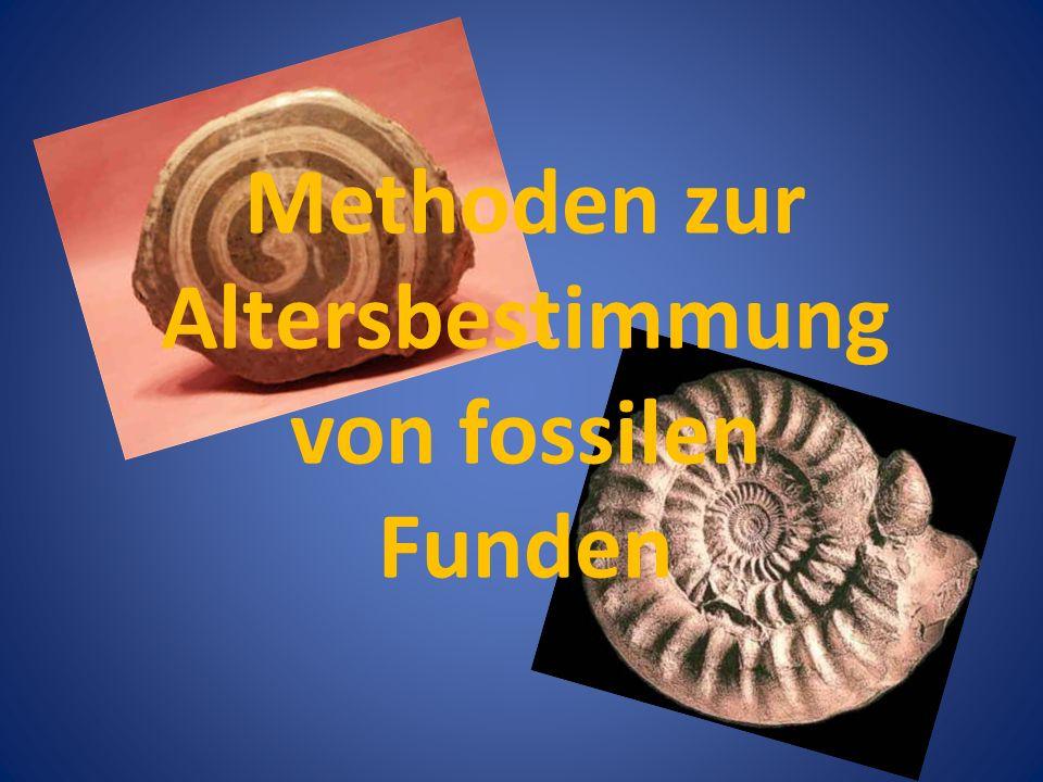Methoden zur Altersbestimmung von fossilen Funden