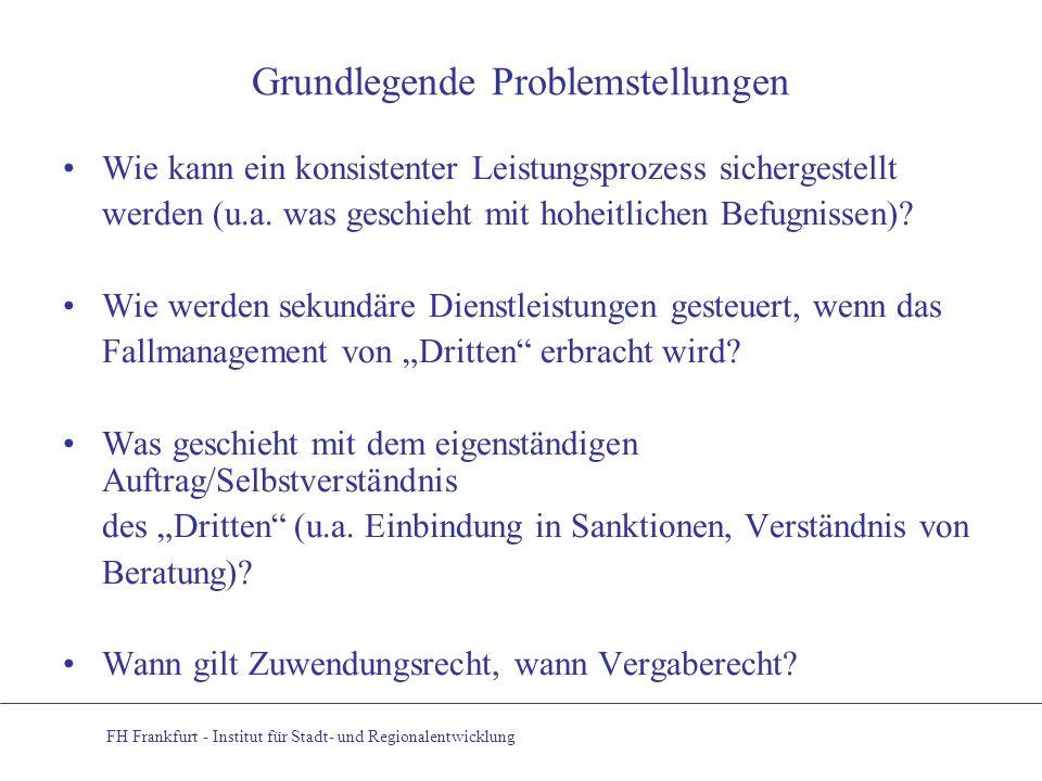 Grundlegende Problemstellungen Wie kann ein konsistenter Leistungsprozess sichergestellt werden (u.a. was geschieht mit hoheitlichen Befugnissen)? Wie