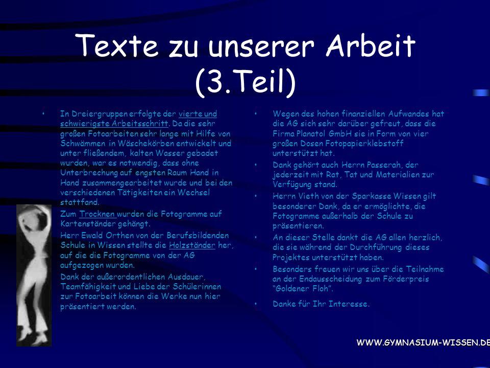 Text zu unserer Arbeit (2.