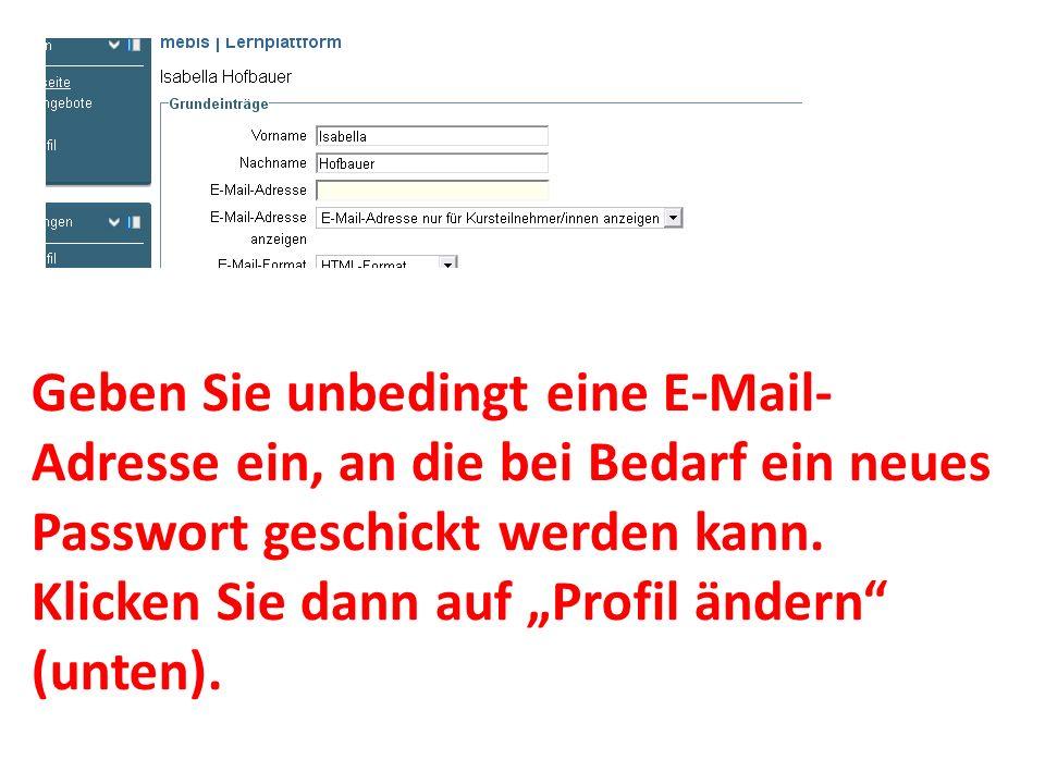 Geben Sie unbedingt eine E-Mail- Adresse ein, an die bei Bedarf ein neues Passwort geschickt werden kann. Klicken Sie dann auf Profil ändern (unten).