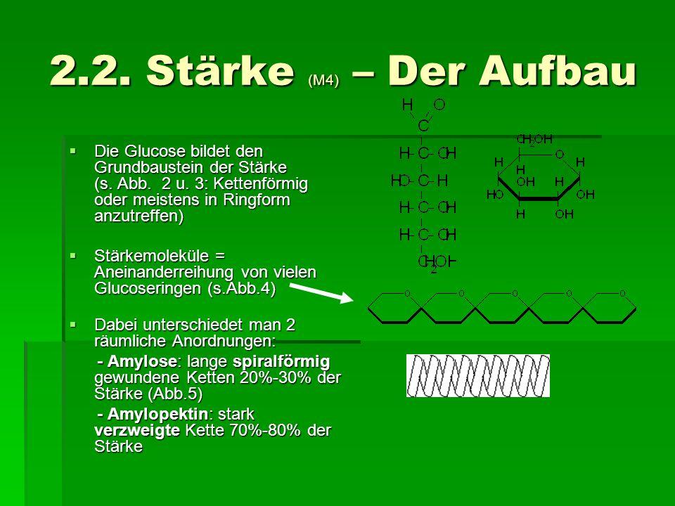 2.2. Stärke (M4) – Der Aufbau Die Glucose bildet den Grundbaustein der Stärke (s. Abb. 2 u. 3: Kettenförmig oder meistens in Ringform anzutreffen) Die