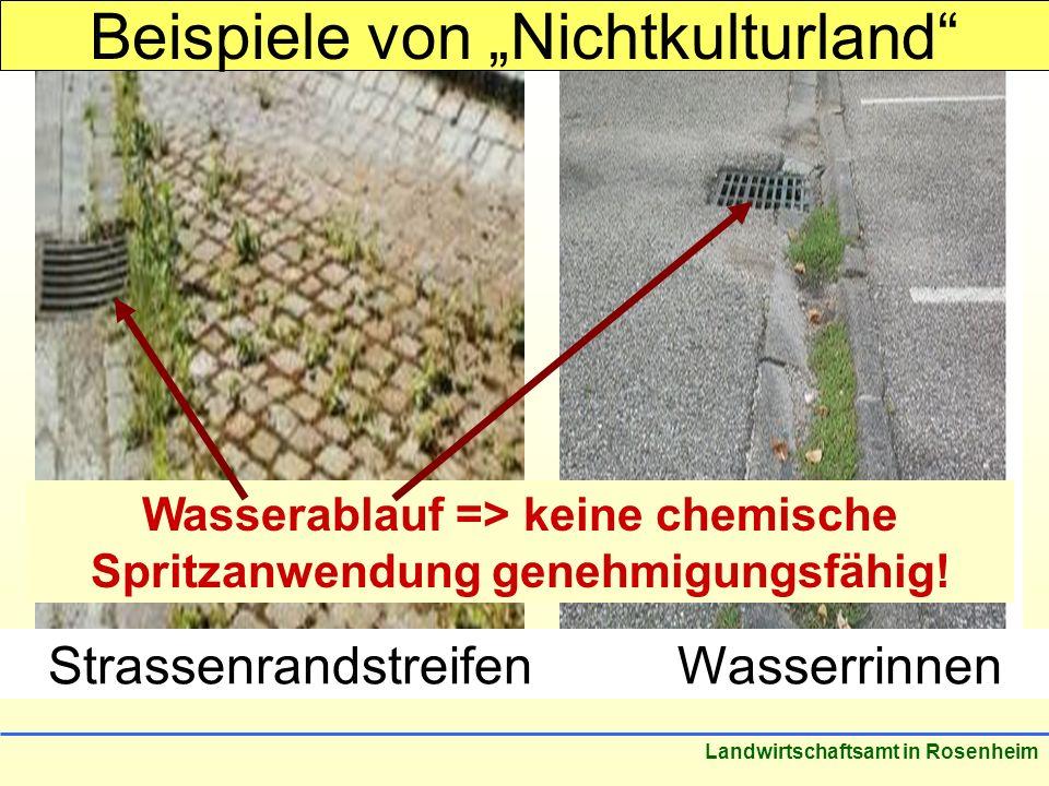 Stand: März 2005 Landwirtschaftsamt in Rosenheim StrassenrandstreifenWasserrinnen Beispiele von Nichtkulturland Wasserablauf => keine chemische Spritzanwendung genehmigungsfähig!