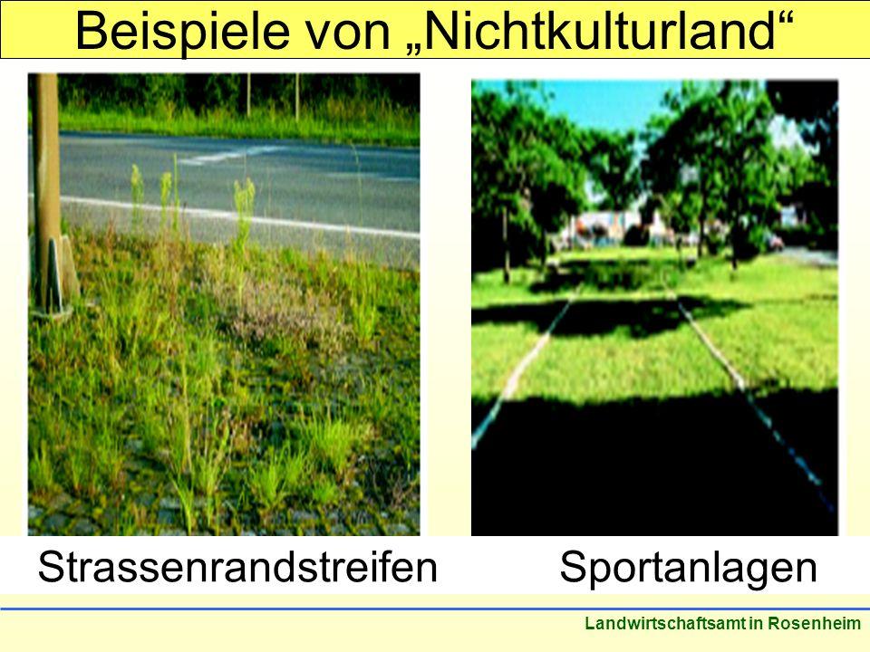 Stand: März 2005 Landwirtschaftsamt in Rosenheim StrassenrandstreifenSportanlagen Beispiele von Nichtkulturland