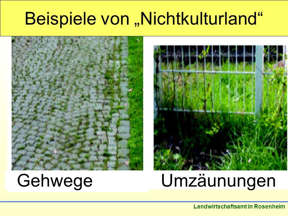 Stand: März 2005 Landwirtschaftsamt in Rosenheim GehwegeUmzäunungen Beispiele von Nichtkulturland