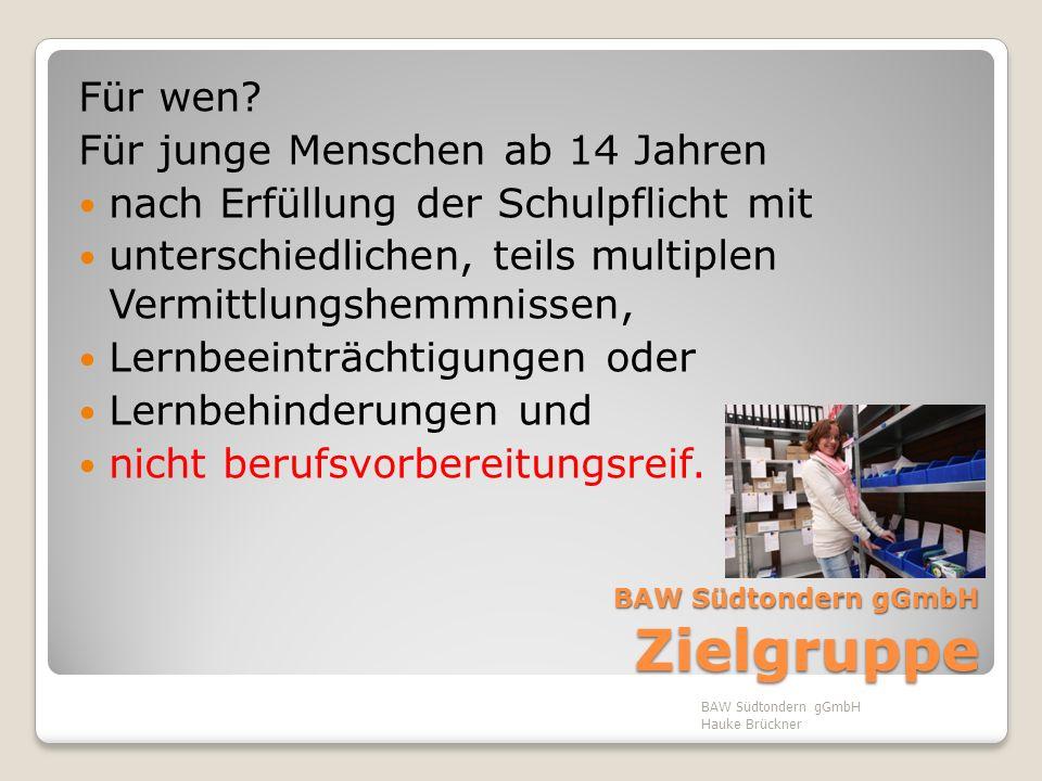 BAW Südtondern gGmbH Zielsetzung & Methodik Arbeitsmarktintegration, Schwerpunkt Ausbildung, d.h.