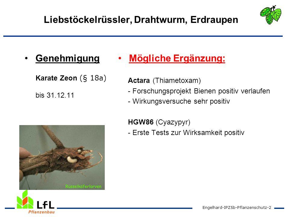 Engelhard-IPZ5b-Pflanzenschutz-2 Liebstöckelrüssler, Drahtwurm, Erdraupen Genehmigung Karate Zeon (§ 18a) bis 31.12.11 Mögliche Ergänzung: Actara (Thi