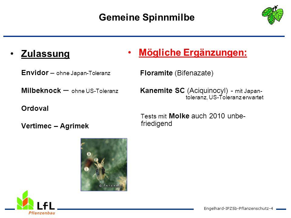 Engelhard-IPZ5b-Pflanzenschutz-5 Peronospora- Primärinfektion Zulassung/ Genehmigung §18 Aliette (Fosetyl-Al) Fonganil Gold (Metalaxyl-M) Mögliche Ergänzungen: a) Profiler (Fluopicolide + Fosethyl) b) Proxanil (Propamocarb + Cymoxanil) Frutogard (Phosphonat) + .