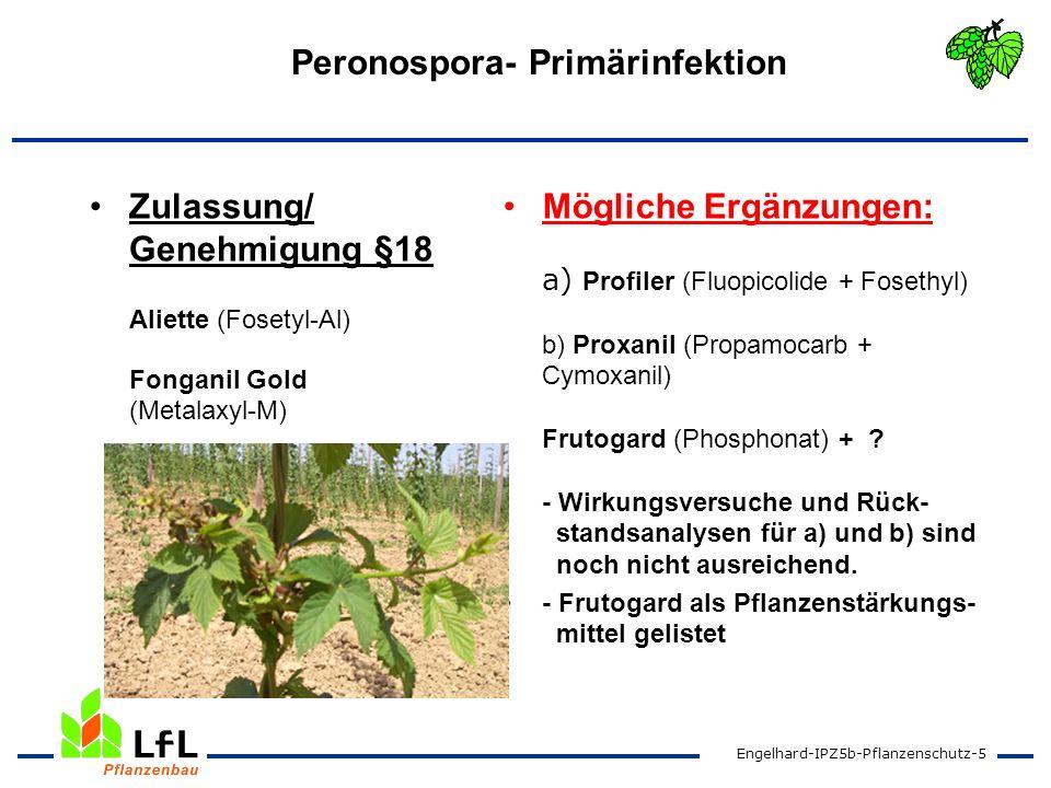Engelhard-IPZ5b-Pflanzenschutz-6 Peronospora- Sekundärinfektion Zulassung Aktuan Aliette WG Delan WG 700 Folpan 80 WDG Forum Funguran Ortiva (31.08.10) Ridomil Gold Combi Mögliche Ergänzungen: Bellis (Pyraclostrobin + Boscalit) Revus (Mandipropamid) SPU- 2700 und/oder SPU-2720 (Cu-hydroxide)