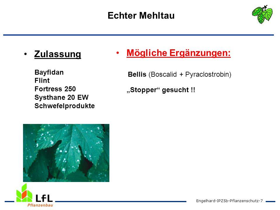 Engelhard-IPZ5b-Pflanzenschutz-7 Echter Mehltau Zulassung Bayfidan Flint Fortress 250 Systhane 20 EW Schwefelprodukte Mögliche Ergänzungen: Bellis (Bo