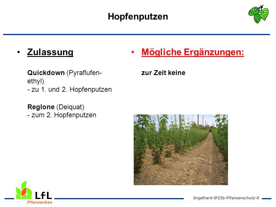 Engelhard-IPZ5b-Pflanzenschutz-9 Herbizide Genehmigungen Buctril (Bromoxynil) Fusilade Max (Fluazifop-P) Lotus (Ciniton-ethyl) - zur Unkrautbekämpfung U-46 Fluid (MCPA) - Bekämpfung von Wurzelun- kräutern ab Gerüsthöhe Mögliche Ergänzungen: Aramo (Tepraloxidim) - - Genehmigung 18a wird erwartet Basta (Glufosinat-ammonium) - zur Ungras- und Unkrautbe- kämpfung nach der Ernte Stomp-Aqua (Pendimethalin) - im Junghopfen und Fechseranzucht