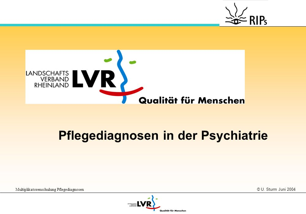 © U. Sturm Juni 2004 Multiplikatorenschulung Pflegediagnosen Pflegediagnosen in der Psychiatrie